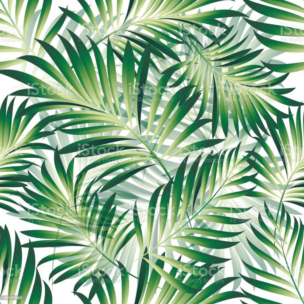 Muster von tropischen Palmen – Vektorgrafik