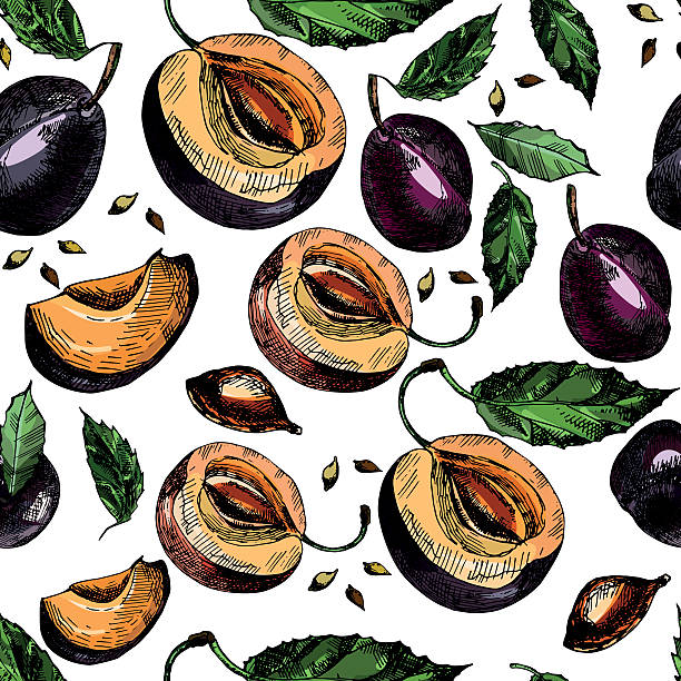 muster mit herrlichen reife pflaumen und lässt. - nektarinenmarmelade stock-grafiken, -clipart, -cartoons und -symbole