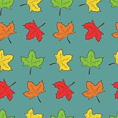 Pattern with cute colorful hand drawn maple leaves on blue background