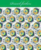 Peacock pattern illustration