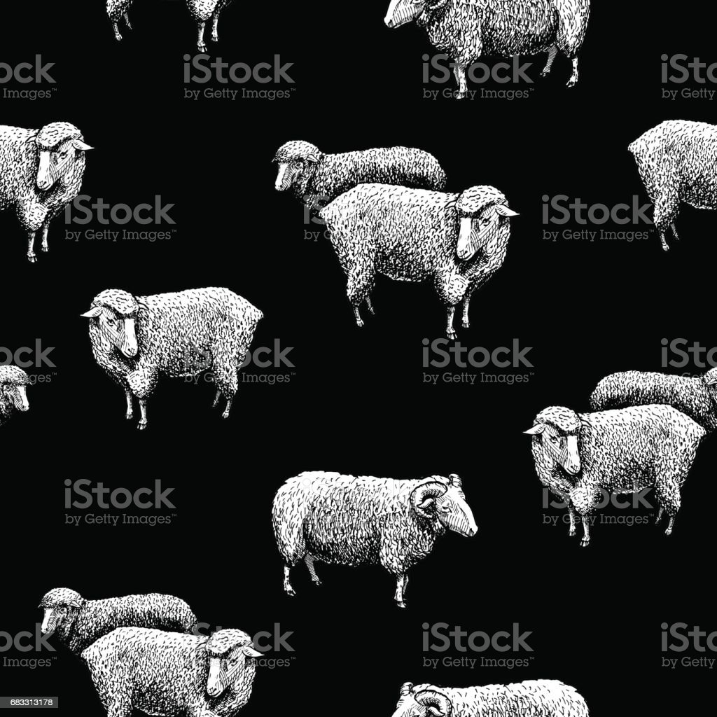 Pattern with sheep pattern with sheep - immagini vettoriali stock e altre immagini di acquaforte royalty-free