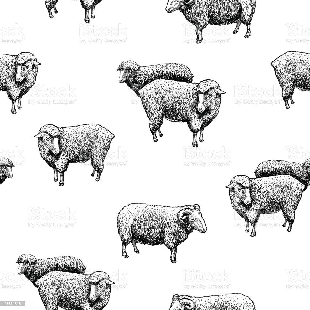Pattern with sheep pattern with sheep - immagini vettoriali stock e altre immagini di acquaforte royalty-free