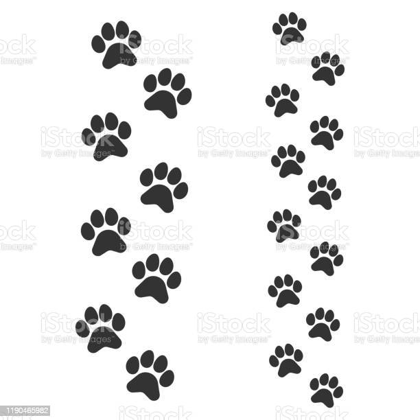 Paw footprints of dog or cat parent and cub adult and child animal vector id1190465982?b=1&k=6&m=1190465982&s=612x612&h=ea084uigeght9z enzlmrbfdusioraq5ntqwnhchh9w=