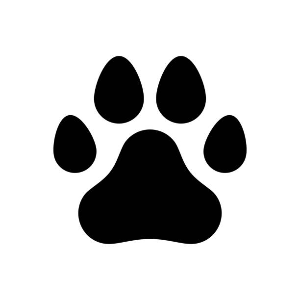 paw of a dog - pets and animals stock illustrations
