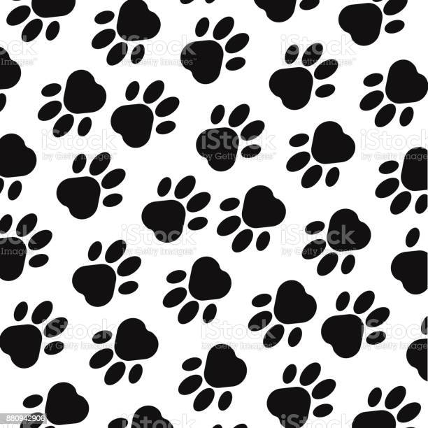 Paw print background footprint seamless background with footprint of vector id880942906?b=1&k=6&m=880942906&s=612x612&h=pmsyrqcgwqfsfw1xzzpwk8 ftdwnykhb aa1xtzle4y=