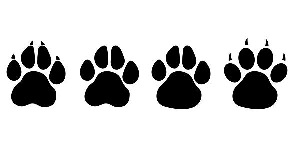 Paw print cat, dog, puppy pet . Flat style - stock vector.