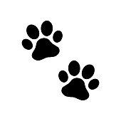 Paw print dog on white back. Vector