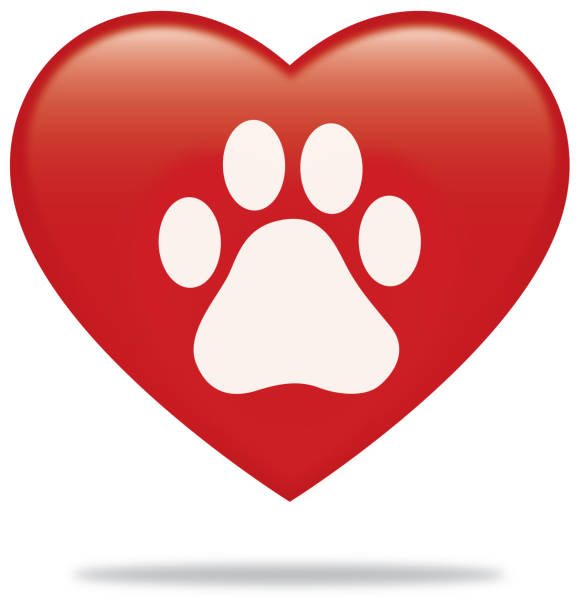 Best Paw Print Dog Paw Heart Shape Illustrations, Royalty ...