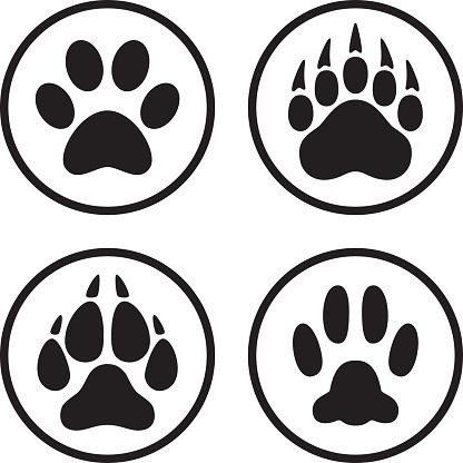 Paw Print Icon Flat Line Art Set