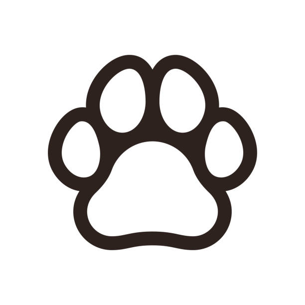 Paw print icon Paw print icon isolated on white background dog stock illustrations
