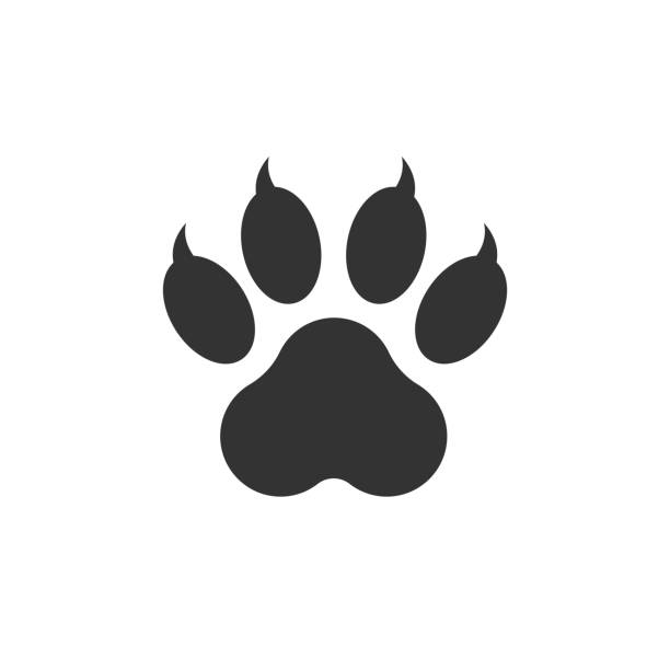 paw print icon vector illustration isolated on white background. dog, cat, bear paw symbol flat pictogram. - tiger stock illustrations, clip art, cartoons, & icons