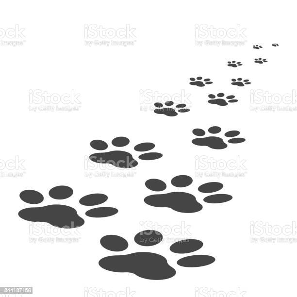 Paw print icon vector illustration isolated on white background dog vector id844187156?b=1&k=6&m=844187156&s=612x612&h=h94dzeoazc4z0f6urrwav2h6p7jogpbdso7m30wc86e=