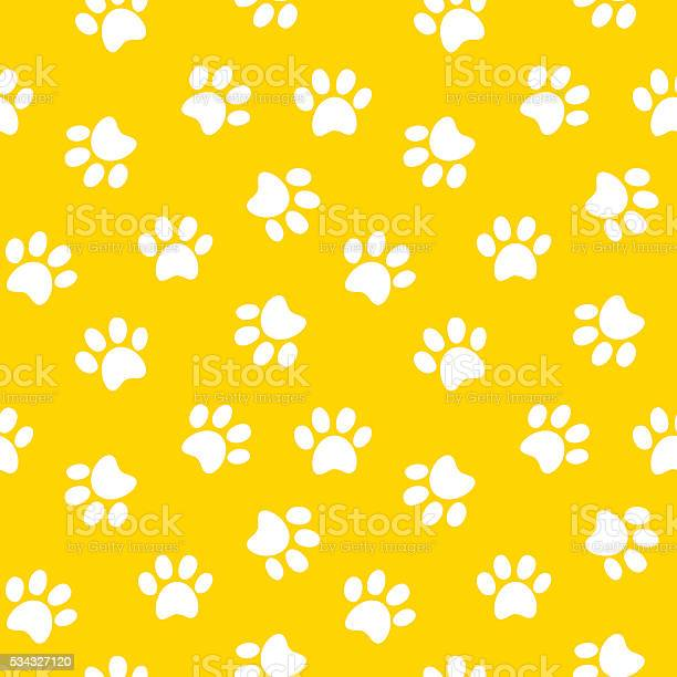 Paw print seamless pattern vector id534327120?b=1&k=6&m=534327120&s=612x612&h=0t8c9ygafmpilvm70wilwkctngldvmtantgfeppiw0e=