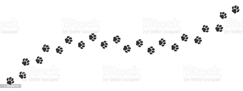 Paw print trail on white background. Vector cat or dog, pawprint walk...