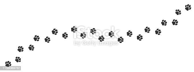 istock Paw print trail on white background. Vector cat or dog, pawprint walk line path pattern background 1138089752