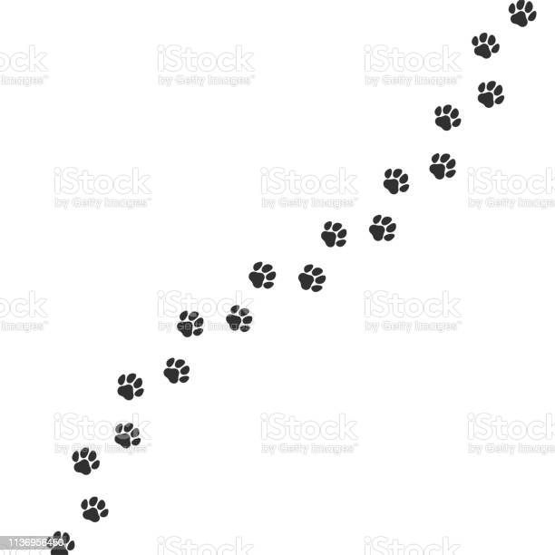 Paw print trail on white background vector cat or dog wild animal vector id1136956450?b=1&k=6&m=1136956450&s=612x612&h=n6kzxtkyl mxgf9mtdjuockn2wkmxyox 4fraey2t4m=
