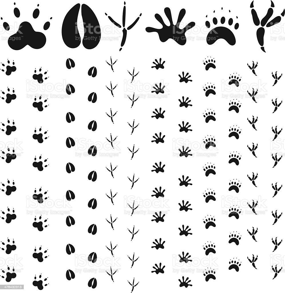 動物の足跡 のイラスト素材 476432313 | istock