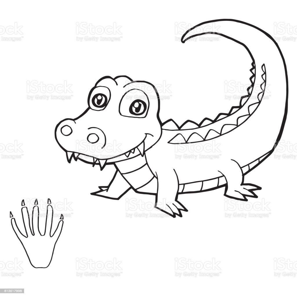 110 malvorlage krokodil einfache zeichnung  coloring and