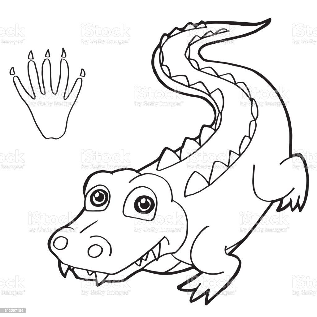 Paw Print With Crocodile Coloring Page Vector Stock Vector Art ...