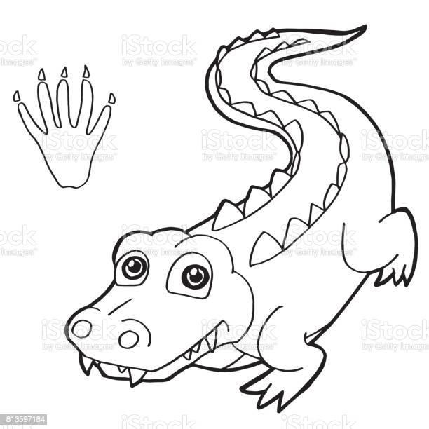 paw print mit krokodil coloring seite vektor stock vektor art und mehr  bilder von agrarbetrieb - istock  istock