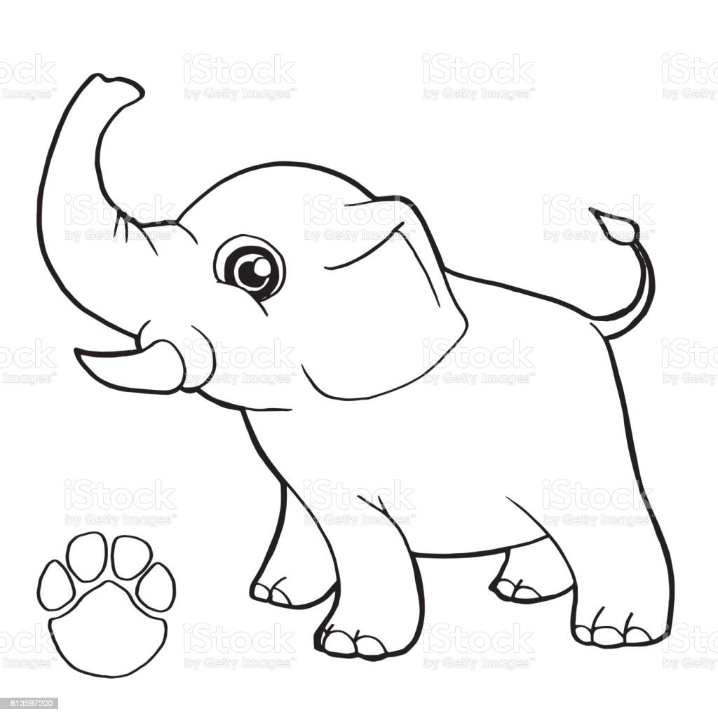 Paw Print With Elephant Coloring Page Vector Stock Art More