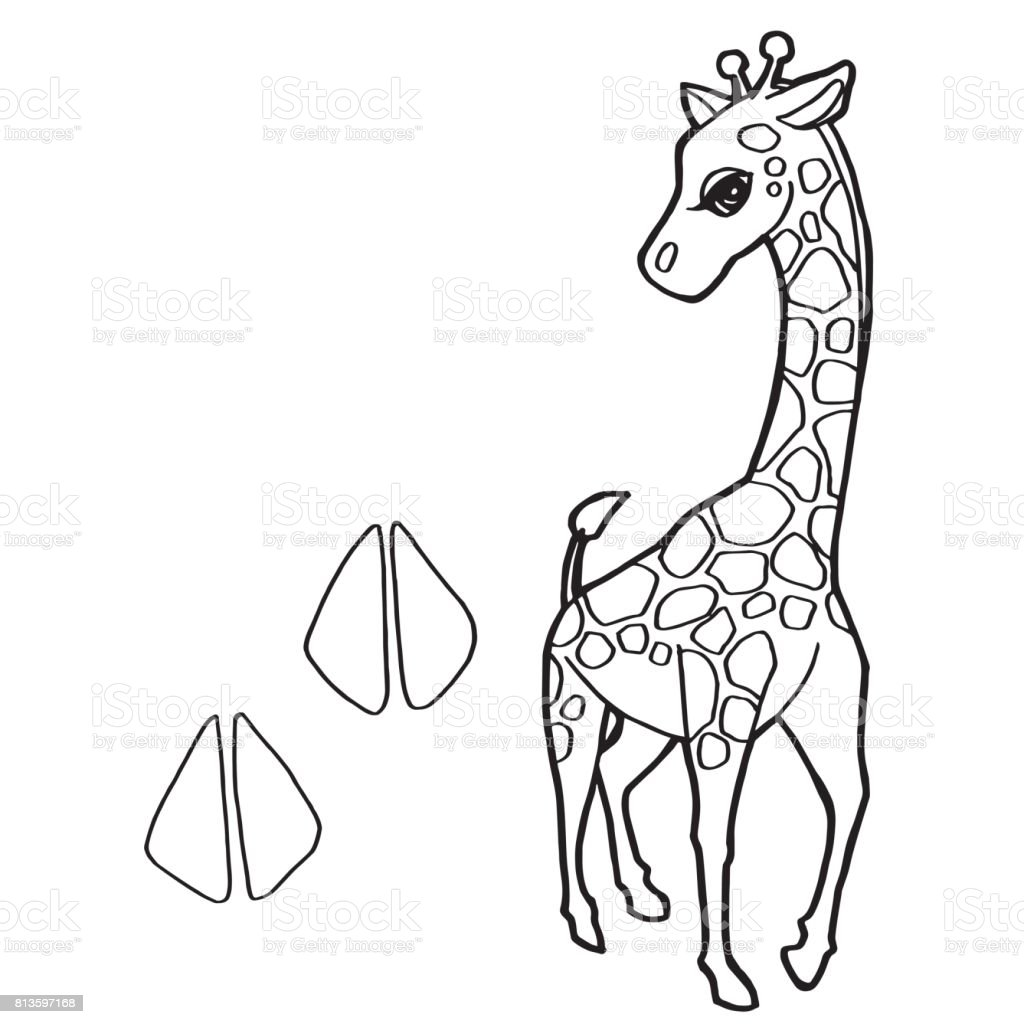 Zürafa Boyama Page Vektör Ile Pençe Yazdır Stok Vektör Sanatı