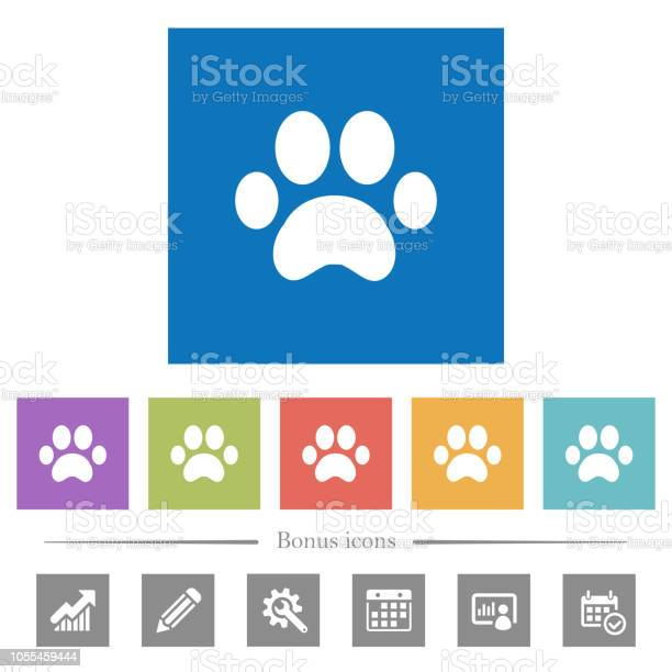 Paw prints flat white icons in square backgrounds vector id1055459444?b=1&k=6&m=1055459444&s=612x612&h=c1 gkw5gvoiuh vnny7dhbl46fvgynaykob8glexle8=