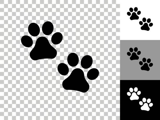 Paw Prints Icon on Checkerboard Transparent Background vector art illustration