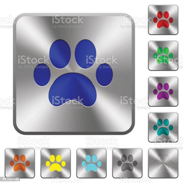 Paw prints rounded square steel buttons vector id827044182?b=1&k=6&m=827044182&s=612x612&h=o9m9an2odqw3x7soeoevtrt3ki6dm 2w bwyy28nume=