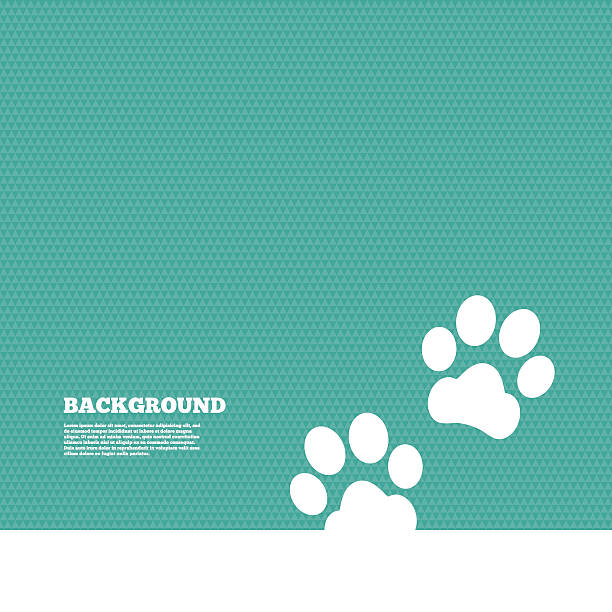 stockillustraties, clipart, cartoons en iconen met paw sign icon. dog pets steps symbol - dierenziekenhuis