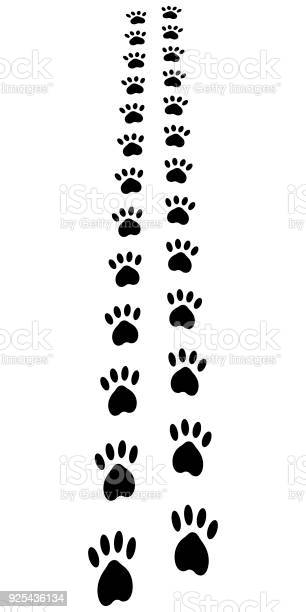 Paw trail paw prints animal cat dog footprints vector away path vector id925436134?b=1&k=6&m=925436134&s=612x612&h=yvtqwfbuiijvpbn8k79q78agdkodtp0q02sdocak6sg=