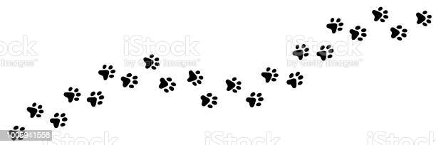 Paw vector print of cat dog puppy animal long trail vector id1005941558?b=1&k=6&m=1005941558&s=612x612&h=4yug0nxqstnsuadrkciqpckfzna6bbjyjzgbaabec8g=