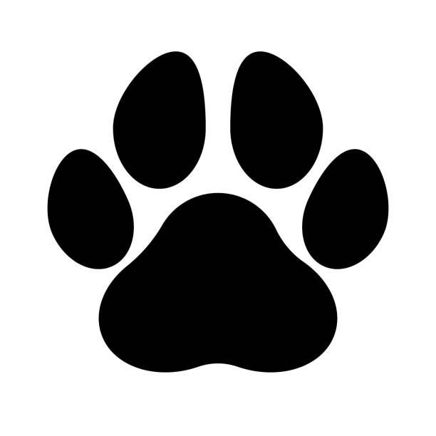 Paw_Print Black silhouette of a paw print, isolated. animal stage stock illustrations