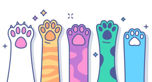 Paws Raised Cat or Dog pet paws raised line drawing colorful horizontal volunteering animal markings stock illustrations
