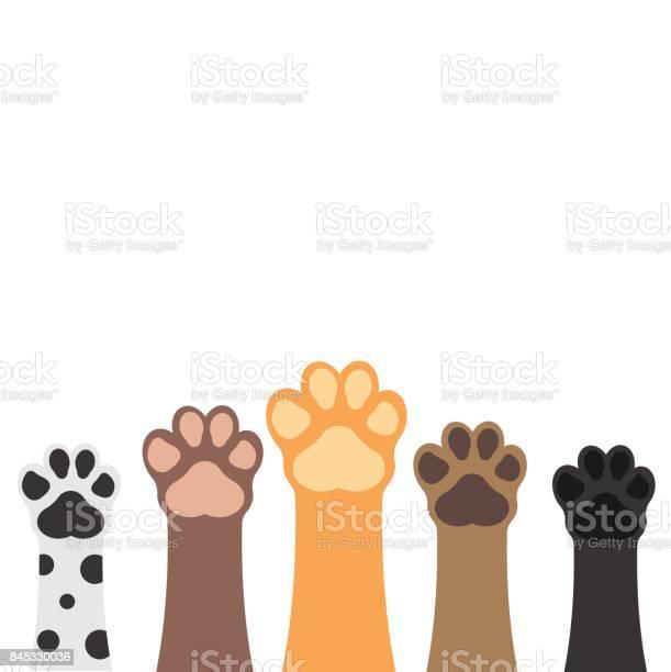 Tassar Upp Husdjur Set Isolerad På Vit Bakgrund Vektorillustration-vektorgrafik och fler bilder på Baner - Skylt