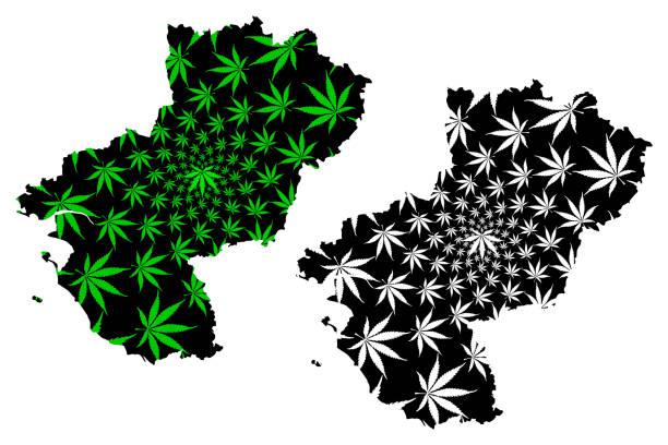 illustrations, cliparts, dessins animés et icônes de pays de la loire (france, région administrative, loire) carte est conçu feuille de cannabis vert et noir, carte pays de la loire fait de la marijuana (marihuana, thc) feuillage, - nantes