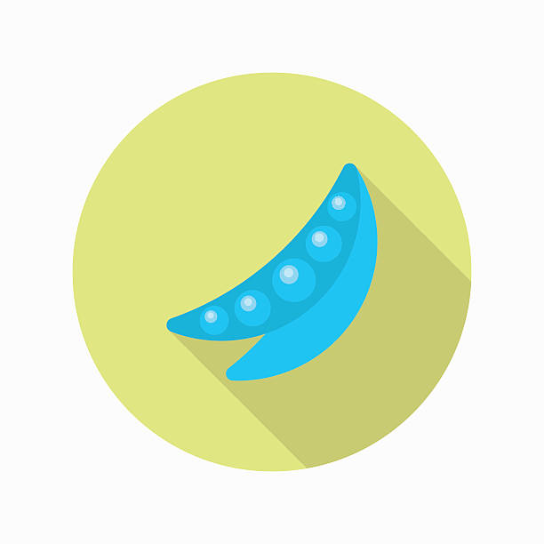 pea icon, vector flat long shadow design. eps10 - like two peas in a pod stock illustrations, clip art, cartoons, & icons