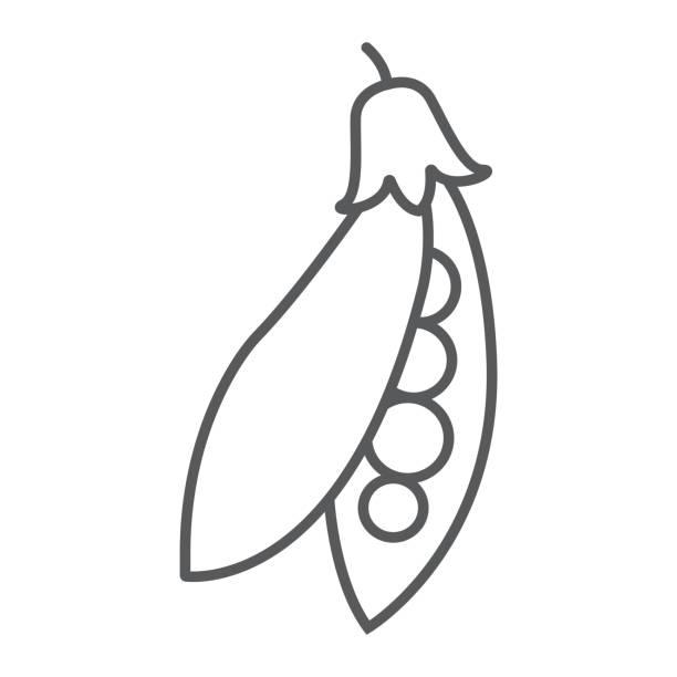 エンドウ豆ポッド細い線アイコン、野菜、食事、エンドウ豆に署名、ベクトル グラフィックス、白い背景、eps 10 の線形パターン。 - 枝豆点のイラスト素材/クリップアート素材/マンガ素材/アイコン素材
