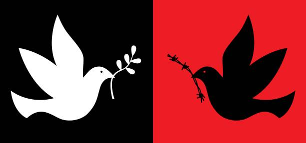 Peace And War Doves Vector illustration of two doves. One white dove carrying an olive be=ranch. One black dove carrying a piece of barbed wire. symbols of peace stock illustrations