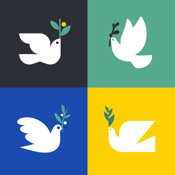 Peace dove. Flat style vector icon or logo template of white pigeon with olive branch. Set of elegant birds Peace dove. Flat style vector icon or logo template of white pigeon with olive branch. Set of elegant birds pigeon stock illustrations