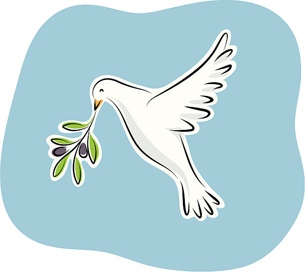white dove in flight holding an olive branch clip art vector images illustrations