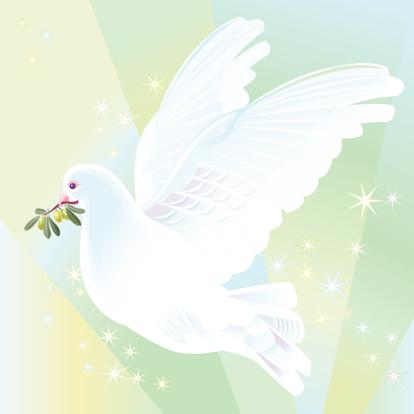 Peace Dove Stockvectorkunst en meer beelden van Close-up