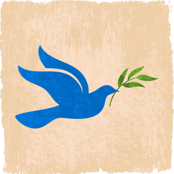 peace dove with olive branch on royalty free vector Background  olive branch stock illustrations