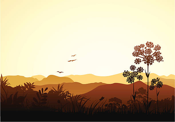 stockillustraties, clipart, cartoons en iconen met peaceful valley - bush