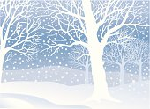 What could be more peaceful than a walk in the silent snowcovered forrest?