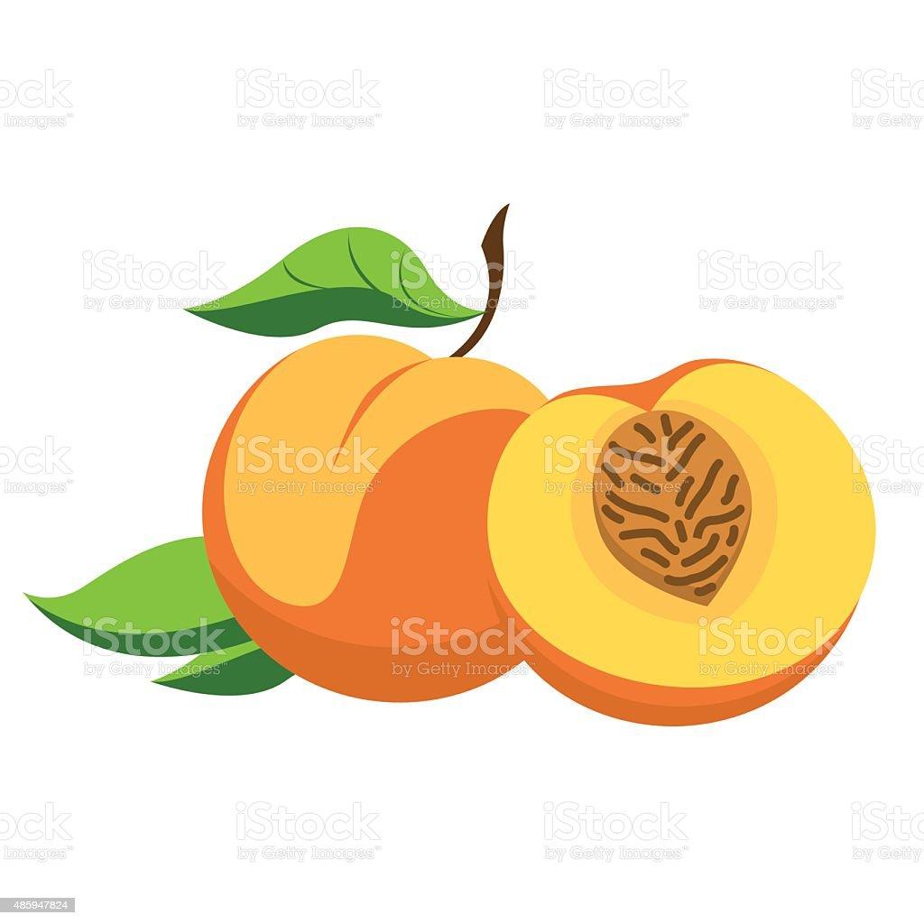 Peach and cut vector art illustration