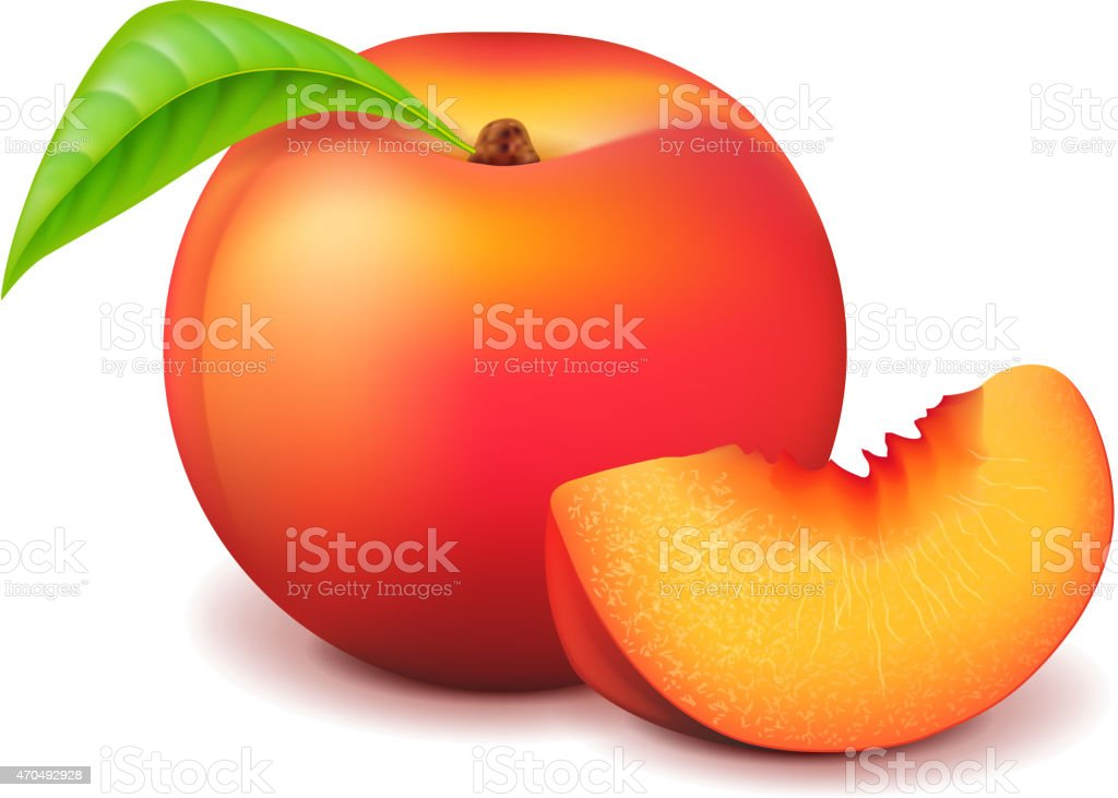 Peach and slice isolated on white vector vector art illustration