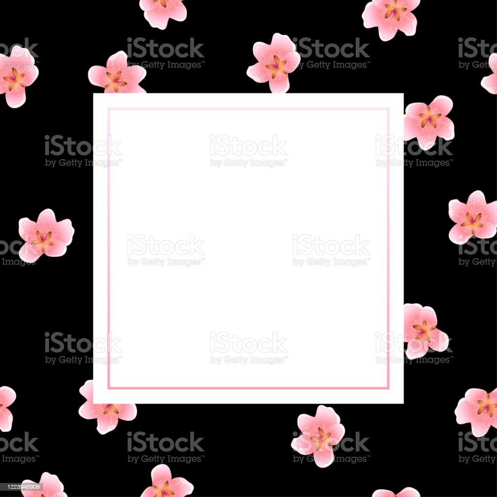 peach blossom banner on black background floral stock illustration download image now istock https www istockphoto com vector peach blossom banner on black background floral gm1223945909 359692597