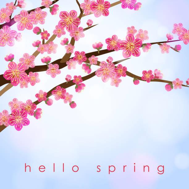 Peach Blossom in Spring vector art illustration