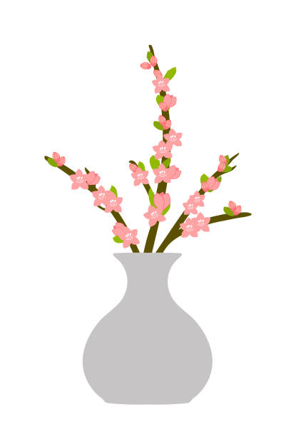 Peach Flower Arrangement 桃の生け花のイラスト peach blossom stock illustrations